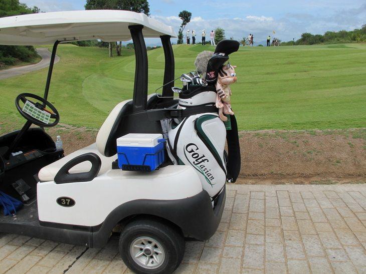 Golf Asian Golf Cart